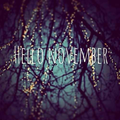 44997-hello-november